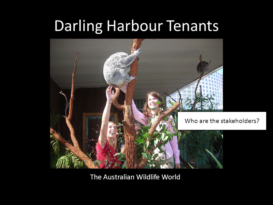 Darling Harbour Tenants The Australian Wildlife World Who are the stakeholders