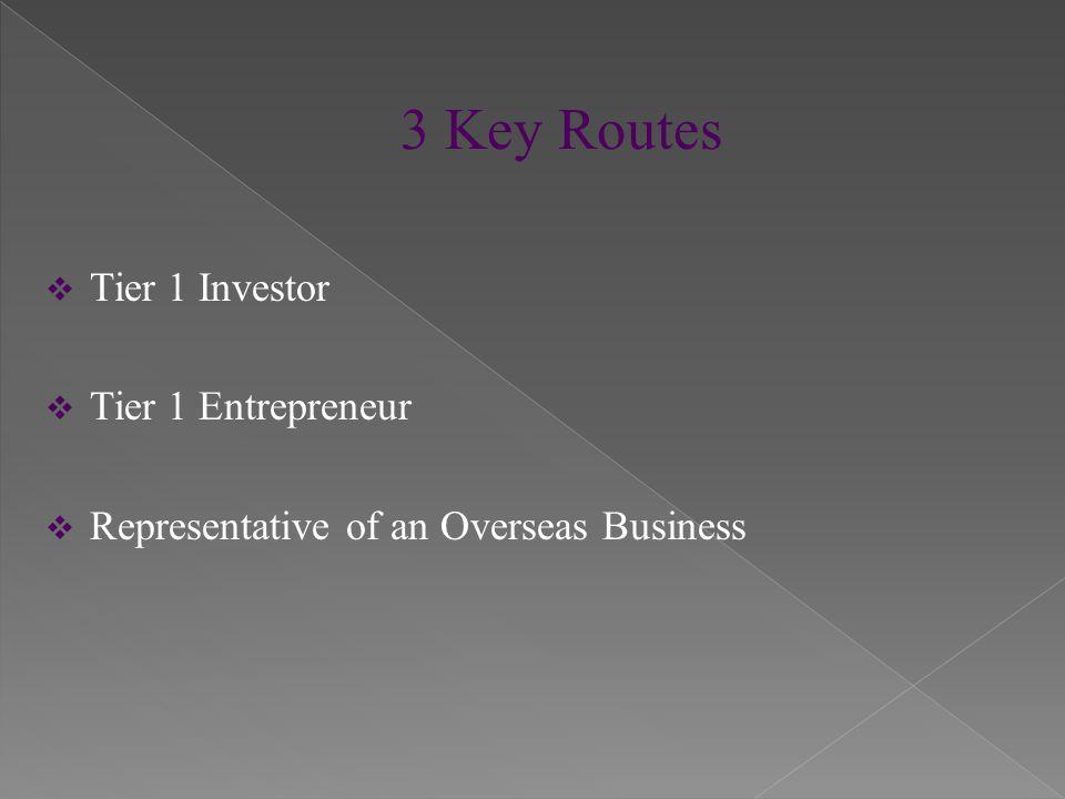  Tier 1 Investor  Tier 1 Entrepreneur  Representative of an Overseas Business