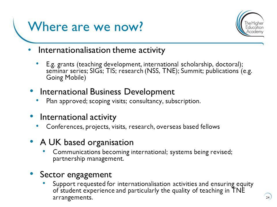 Internationalisation theme activity E.g. grants (teaching development, international scholarship, doctoral); seminar series; SIGs; TIS; research (NSS,