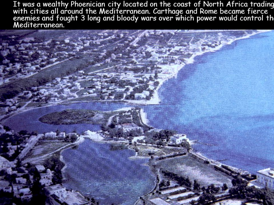 The teeming harbor of Carthage was one of the busiest in the entire Mediterranean world.