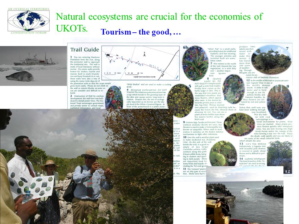 Natural ecosystems are crucial for the economies of UKOTs. Tourism – the good, …