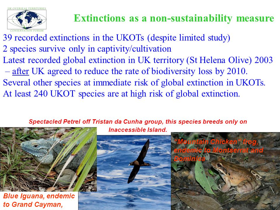 Extinctions as a non-sustainability measure 39 recorded extinctions in the UKOTs (despite limited study) 2 species survive only in captivity/cultivati