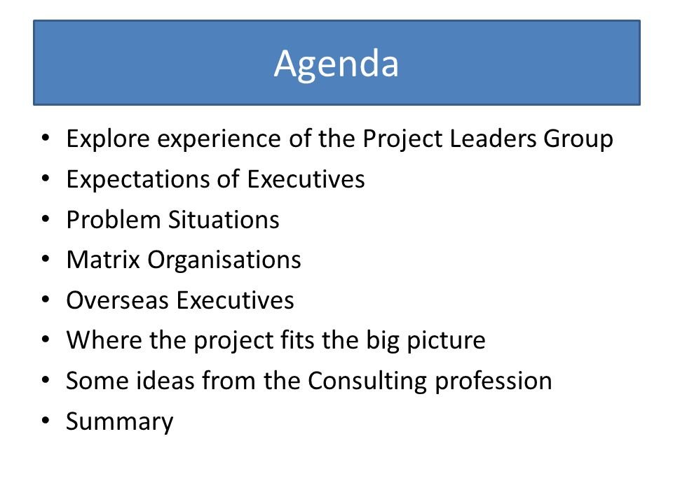 Agenda Explore experience of the Project Leaders Group Expectations of Executives Problem Situations Matrix Organisations Overseas Executives Where the project fits the big picture Some ideas from the Consulting profession Summary