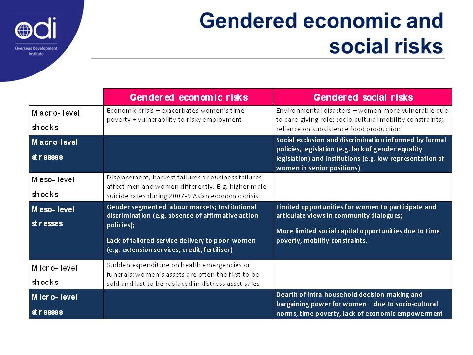 Gendered economic and social risks