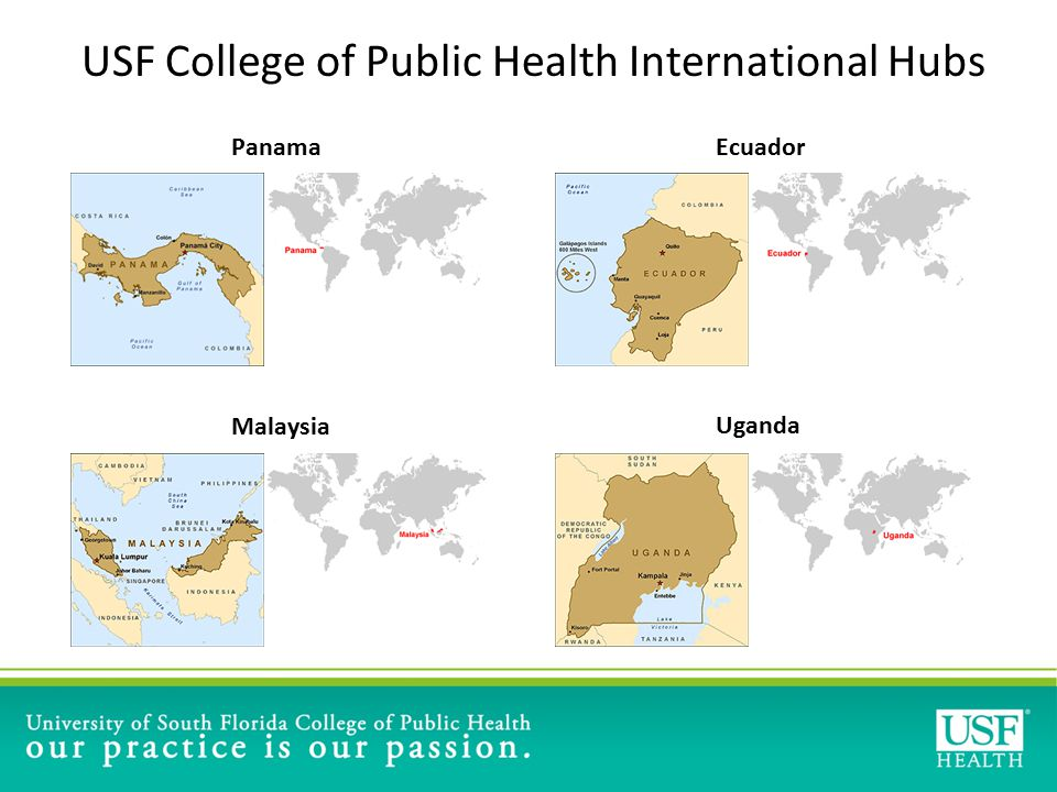USF College of Public Health International Hubs PanamaEcuador Malaysia Uganda