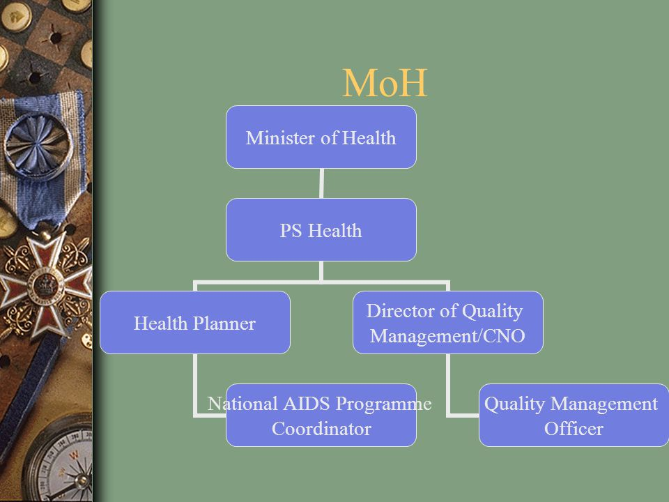 MoH Minister of Health PS Health Health Planner National AIDS Programme Coordinator Director of Quality Management/CNO Quality Management Officer