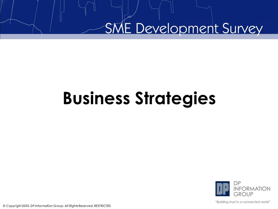 © Copyright 2005. DP Information Group. All Rights Reserved. RESTRICTED Business Strategies