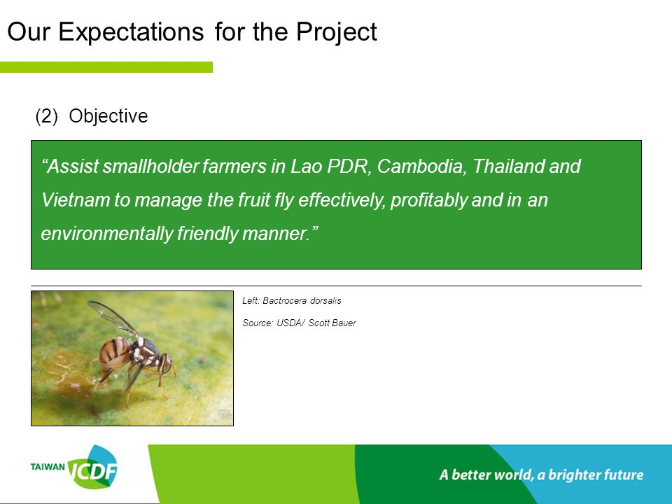 Our Expectations for the Project (3)Expectations Increase GIS mapping of fruit fly distribution throughout the Mekong region Develop effective Integrated Pest Management (IPM) strategies Train seed trainers to disseminate knowledge of IPM Establish and develop farmers' field schools (FFS) to disseminate knowledge of IPM Support academic research and utilize this research in the field Support regional workshops and consolidate region-wide channels for communication Right: Bactrocera cucurbitae Source: USDA/ Scott Bauer