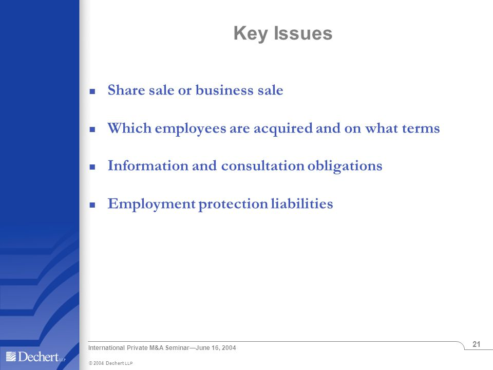 International Private M&A Seminar—June 16, 2004 21 Key Issues Share sale or business sale Which employees are acquired and on what terms Information and consultation obligations Employment protection liabilities