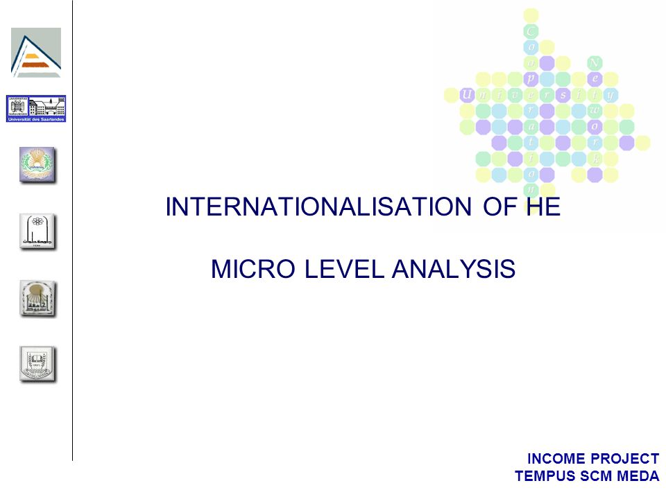 INCOME PROJECT TEMPUS SCM MEDA INTERNATIONALISATION OF HE MICRO LEVEL ANALYSIS