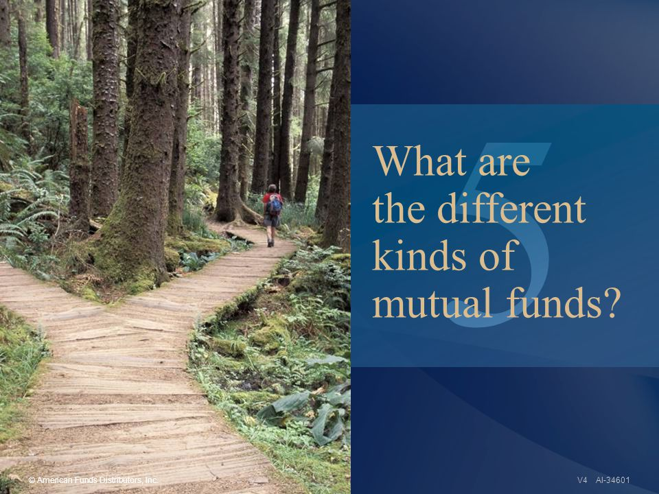5 AI-34601 What are the different kinds of mutual funds © American Funds Distributors, Inc.V4