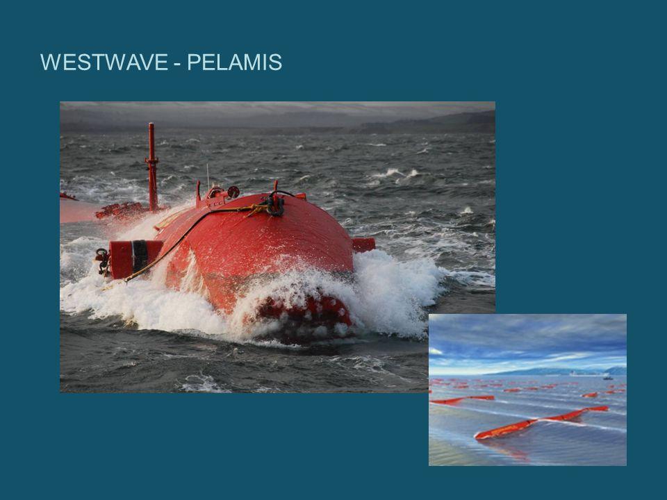 WESTWAVE - PELAMIS