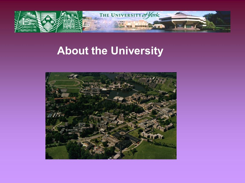 About the University
