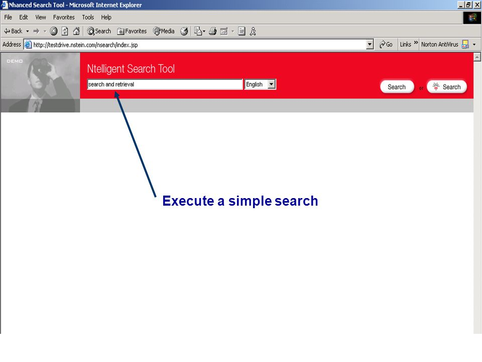Execute a simple search
