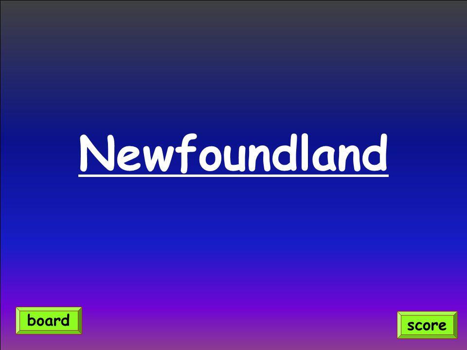 Newfoundland score board