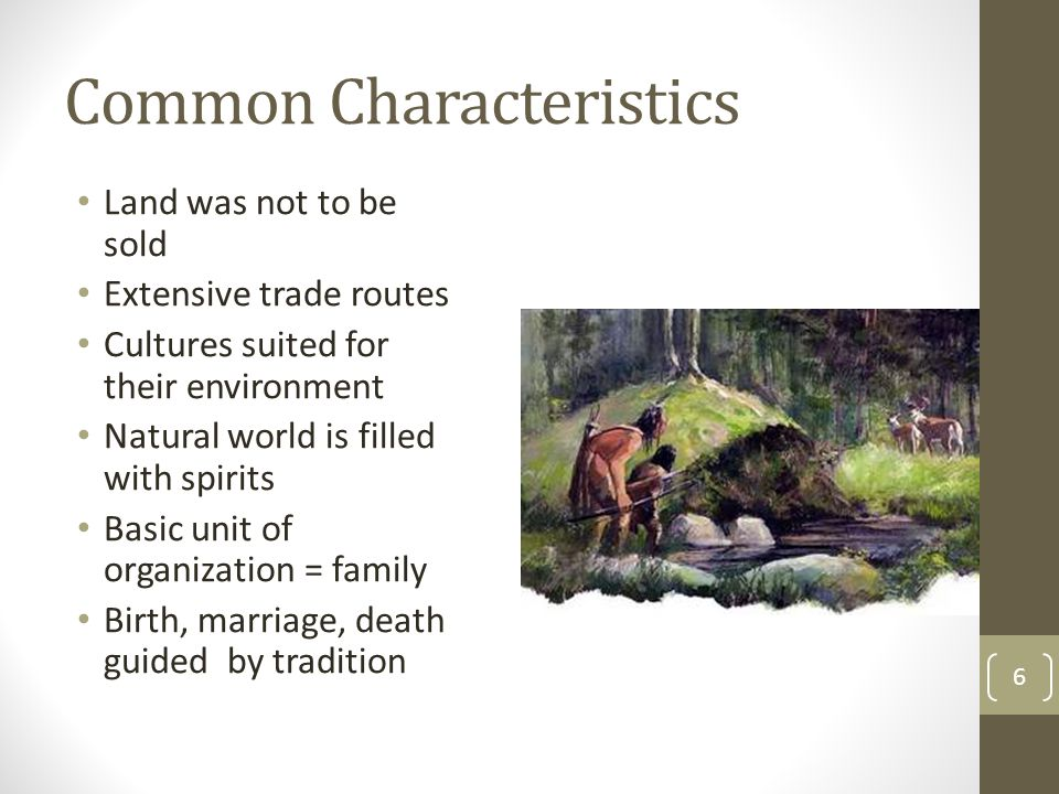 Common Characteristics Land was not to be sold Extensive trade routes Cultures suited for their environment Natural world is filled with spirits Basic unit of organization = family Birth, marriage, death guided by tradition 6
