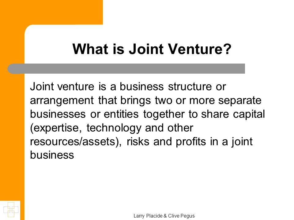 Larry Placide & Clive Pegus What is Joint Venture.