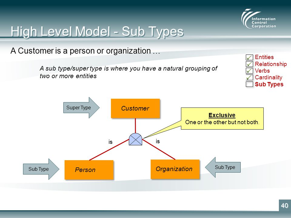 High Level Model - Sub Types 40 A Customer is a person or organization … A sub type/super type is where you have a natural grouping of two or more entities Customer Sub Type Super Type Exclusive One or the other but not both.