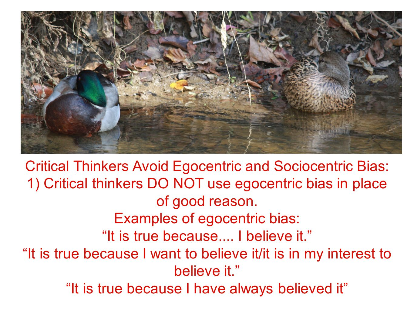 Critical Thinkers Avoid Egocentric and Sociocentric Bias: 1) Critical thinkers DO NOT use egocentric bias in place of good reason.