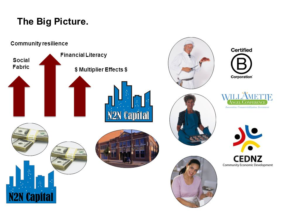 The Big Picture. Community resilience Financial Literacy $ Multiplier Effects $ Social Fabric