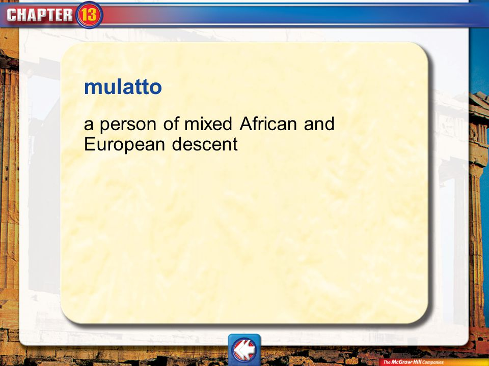 Vocab18 mulatto a person of mixed African and European descent