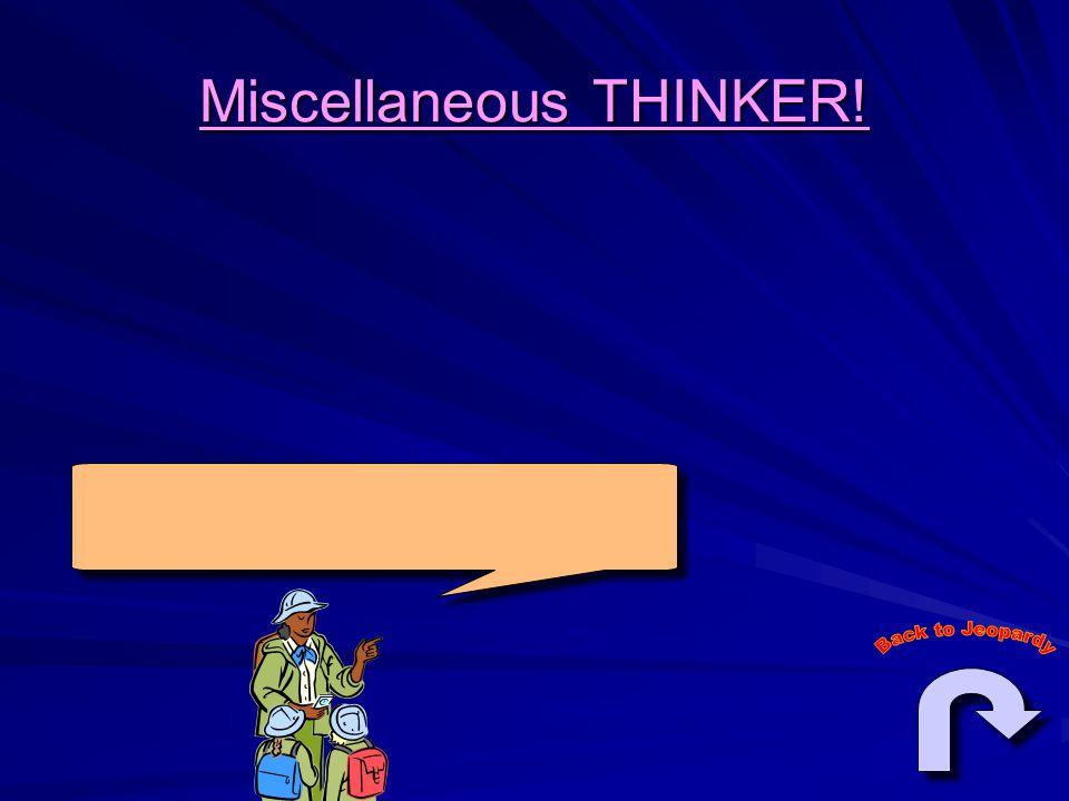Miscellaneous THINKER!
