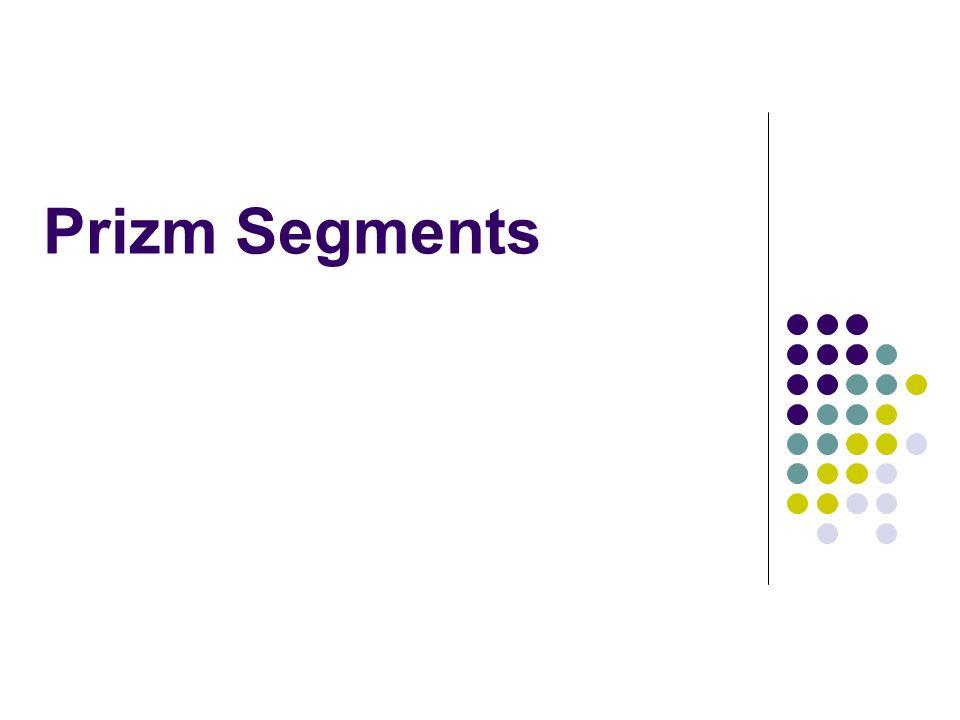 Prizm Segments