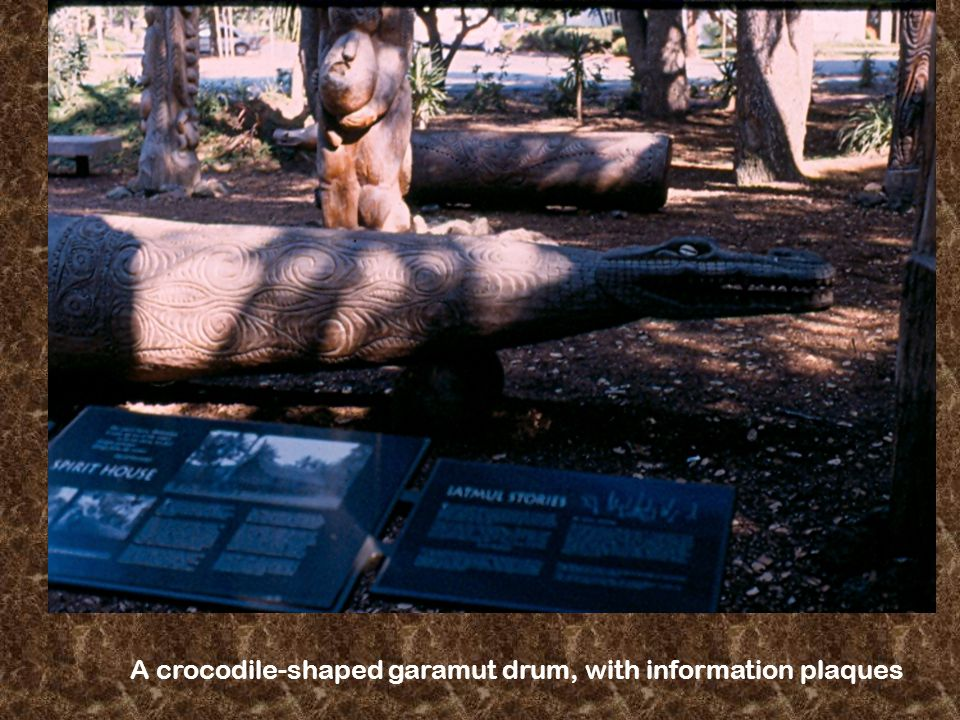 A crocodile-shaped garamut drum, with information plaques
