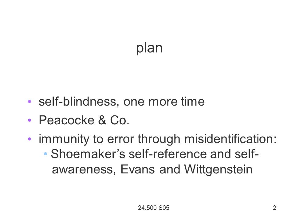 24.500 S05 2 plan self-blindness, one more time Peacocke & Co.