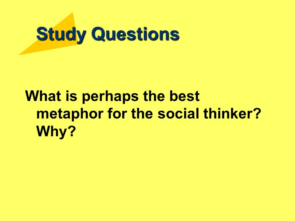 Study Questions What is perhaps the best metaphor for the social thinker? Why?