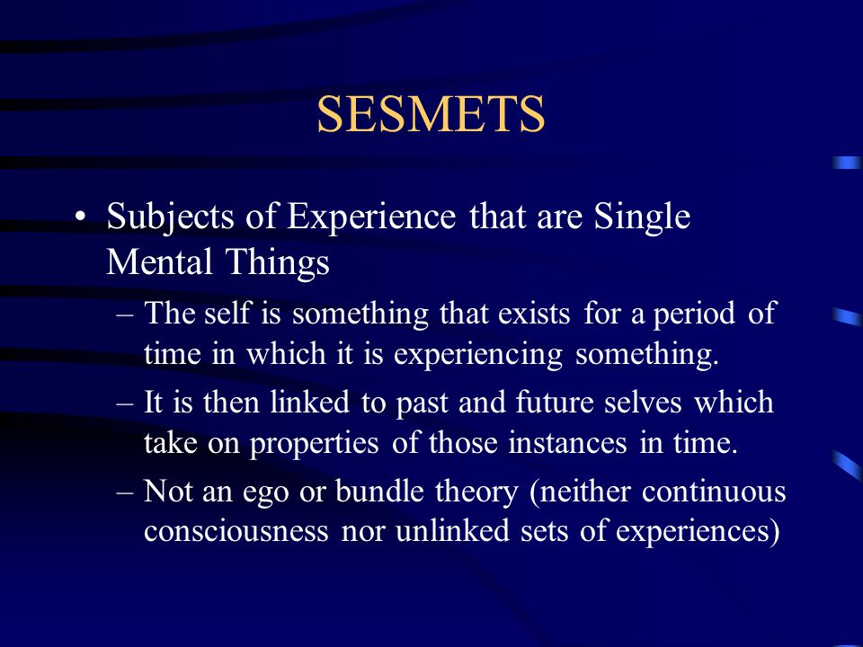 SESMETS Subjects of Experience that are Single Mental Things –The self is something that exists for a period of time in which it is experiencing somet