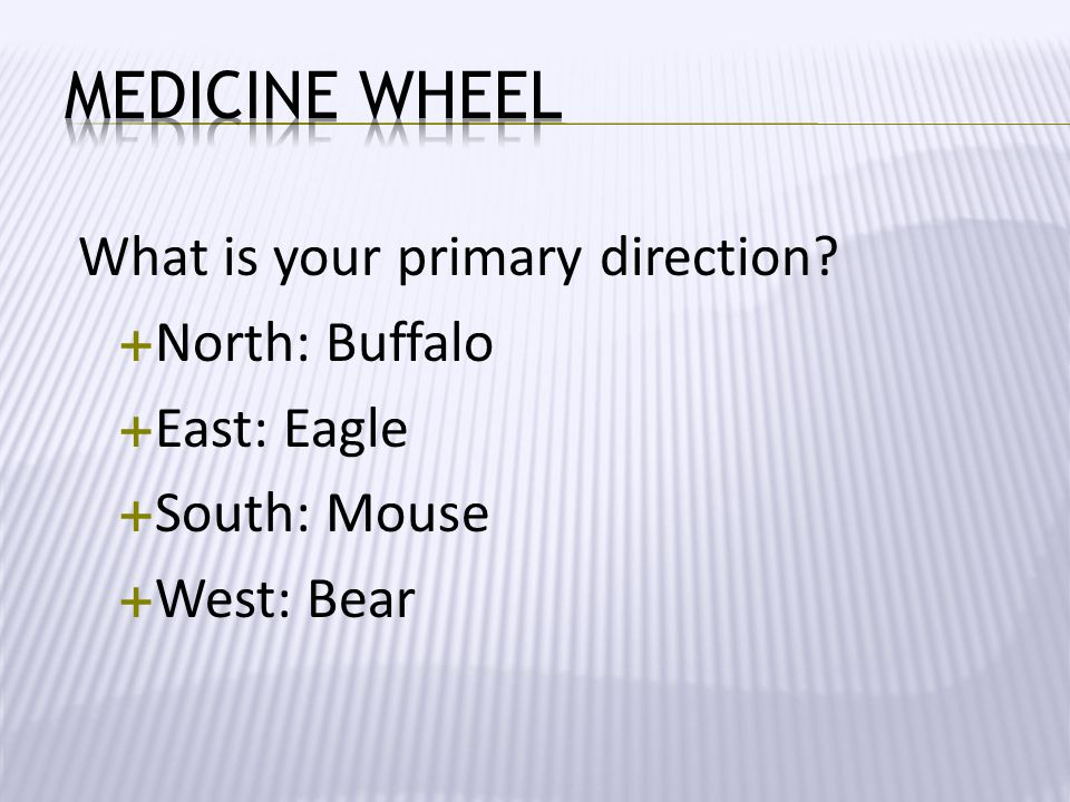 What is your primary direction?  North: Buffalo  East: Eagle  South: Mouse  West: Bear