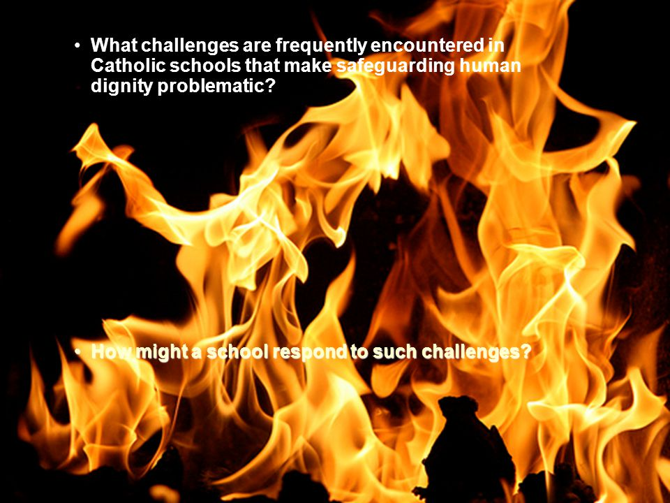 What challenges are frequently encountered in Catholic schools that make safeguarding human dignity problematic.