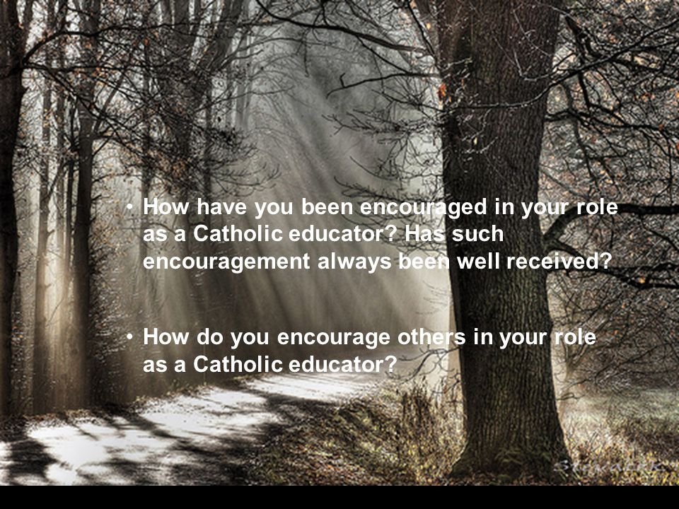 How have you been encouraged in your role as a Catholic educator.