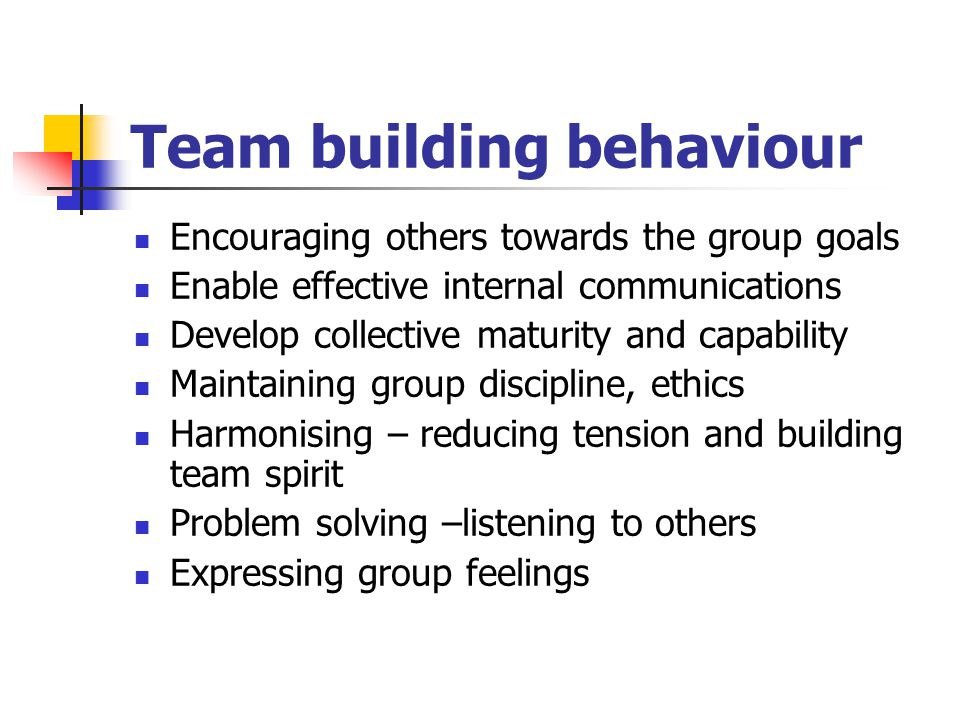 Team building behaviour Encouraging others towards the group goals Enable effective internal communications Develop collective maturity and capability Maintaining group discipline, ethics Harmonising – reducing tension and building team spirit Problem solving –listening to others Expressing group feelings