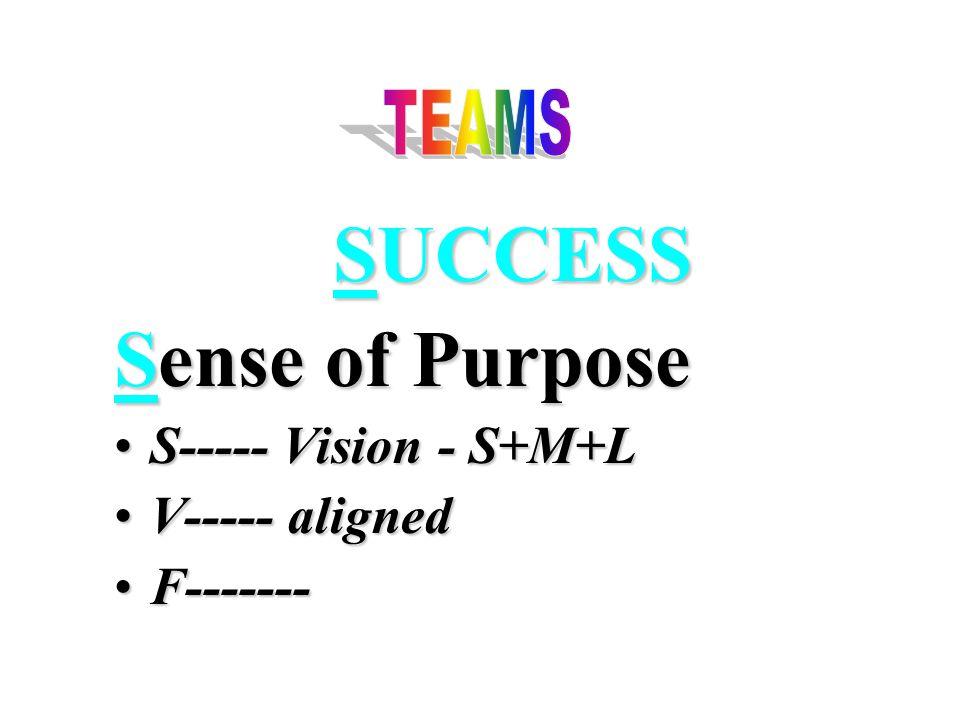 SUCCESS Sense of Purpose S----- Vision - S+M+LS----- Vision - S+M+L V----- alignedV----- aligned F-------F-------