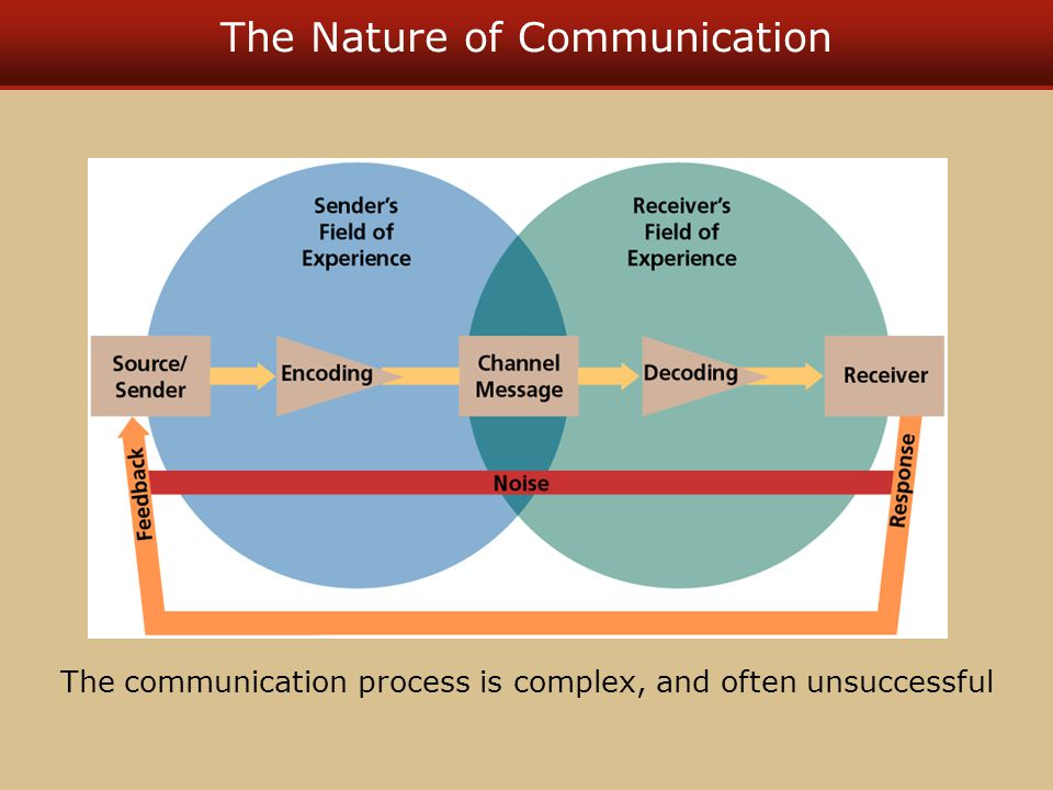The Nature of Communication The communication process is complex, and often unsuccessful