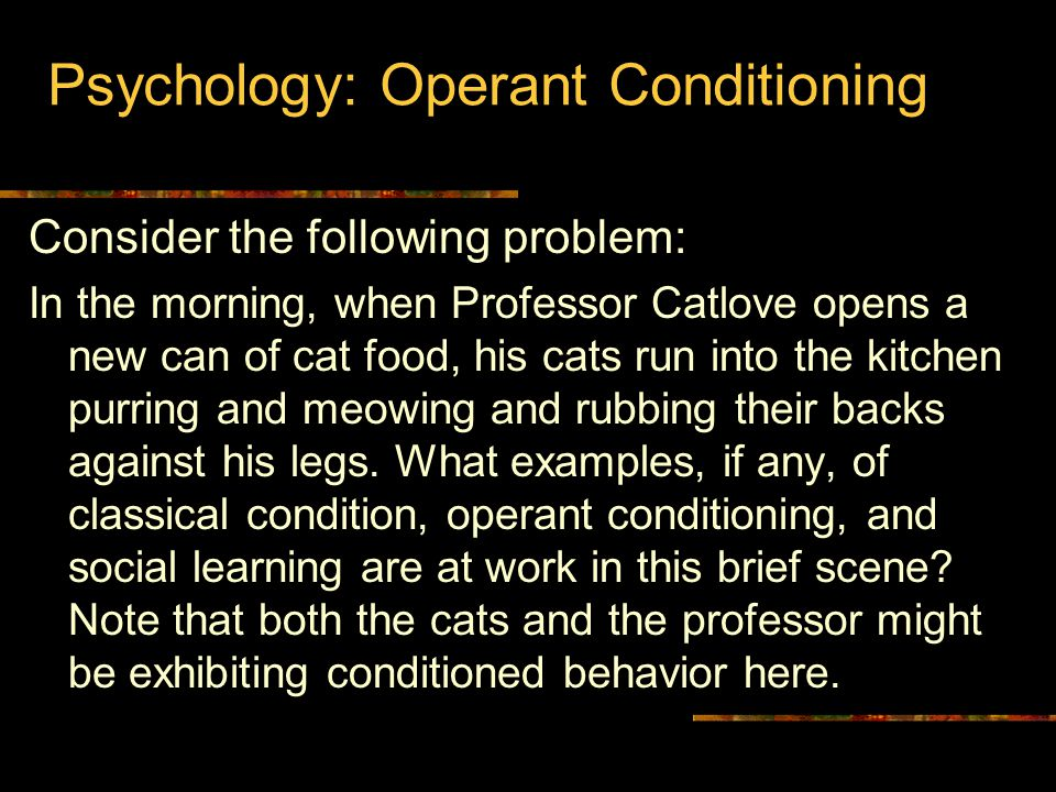 Psychology: Operant Conditioning Consider the following problem: In the morning, when Professor Catlove opens a new can of cat food, his cats run into the kitchen purring and meowing and rubbing their backs against his legs.