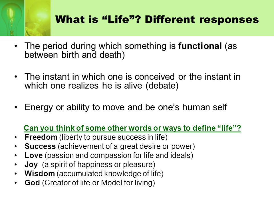 What is a Life Quote .