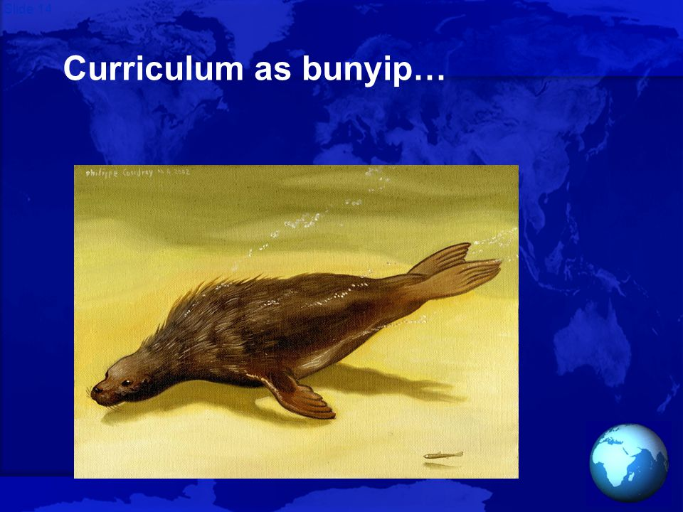 Slide 14 Curriculum as bunyip…