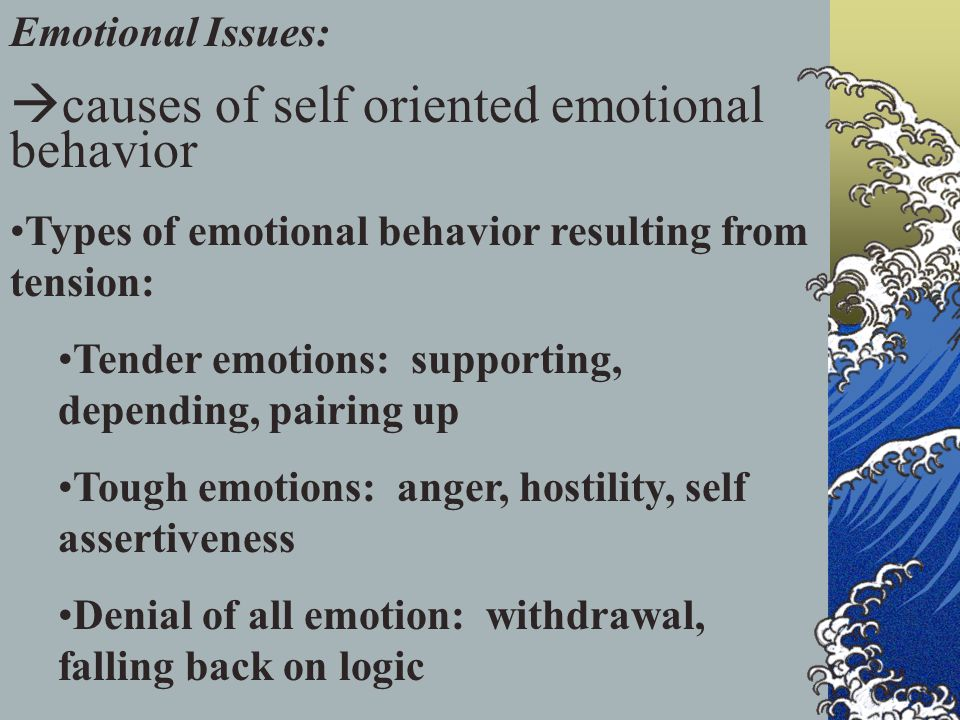 Emotional Issues:  causes of self oriented emotional behavior Types of emotional behavior resulting from tension: Tender emotions: supporting, depending, pairing up Tough emotions: anger, hostility, self assertiveness Denial of all emotion: withdrawal, falling back on logic