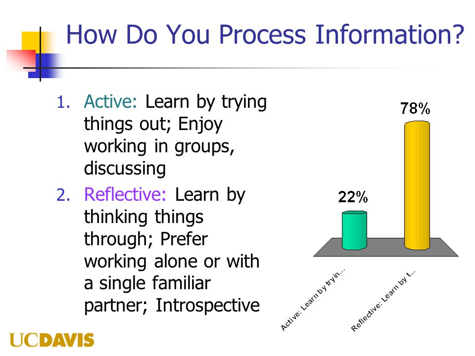 How Do You Process Information? 1. Active: Learn by trying things out; Enjoy working in groups, discussing 2. Reflective: Learn by thinking things thr