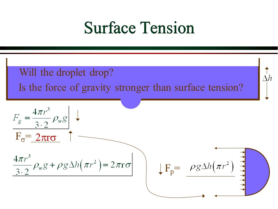 Surface Tension Is the force of gravity stronger than surface tension? 2r2r F=F= Fp=Fp= Will the droplet drop?