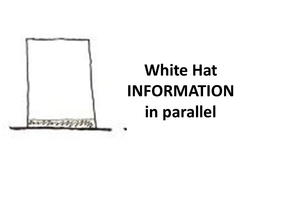 White Hat INFORMATION in parallel