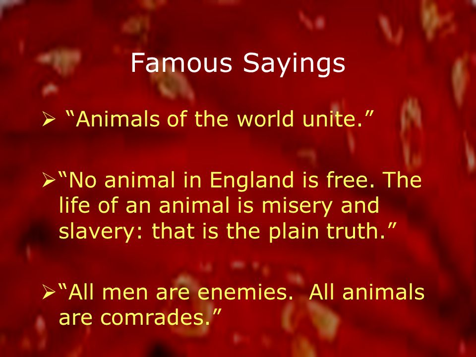 Famous Sayings  Animals of the world unite.  No animal in England is free.