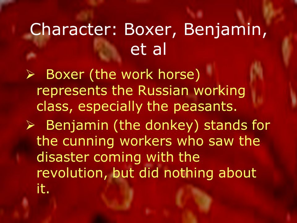 Character: Boxer, Benjamin, et al  Boxer (the work horse) represents the Russian working class, especially the peasants.