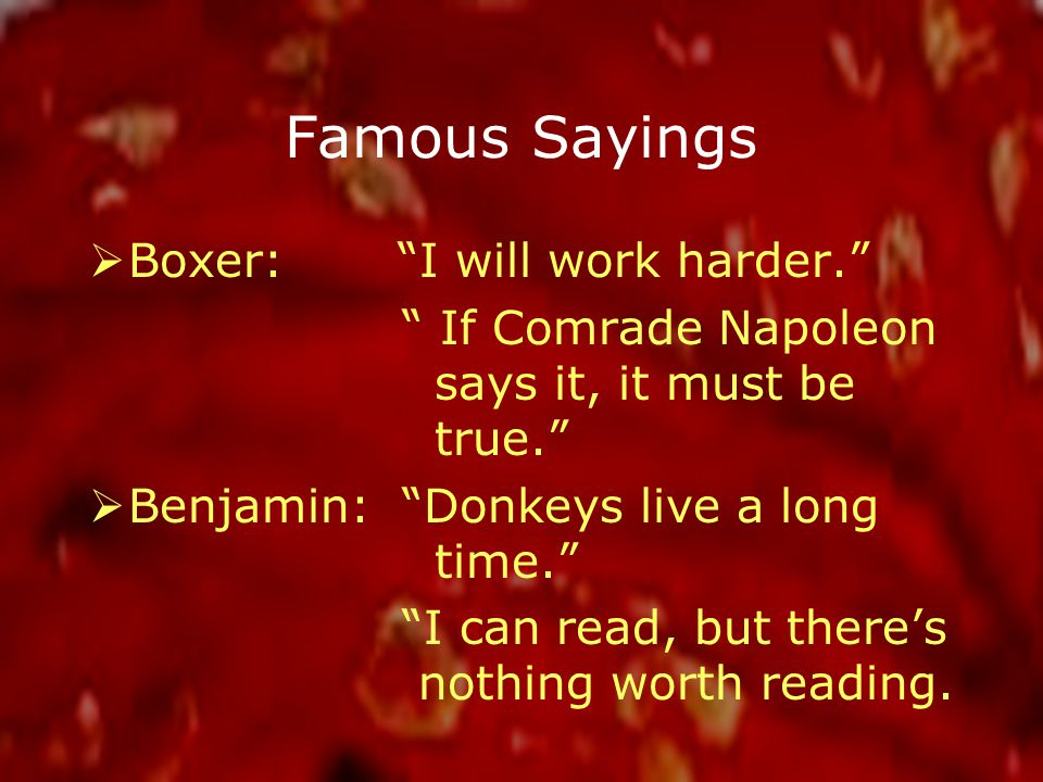 Famous Sayings  Boxer: I will work harder. If Comrade Napoleon says it, it must be true.  Benjamin: Donkeys live a long time. I can read, but there's nothing worth reading.