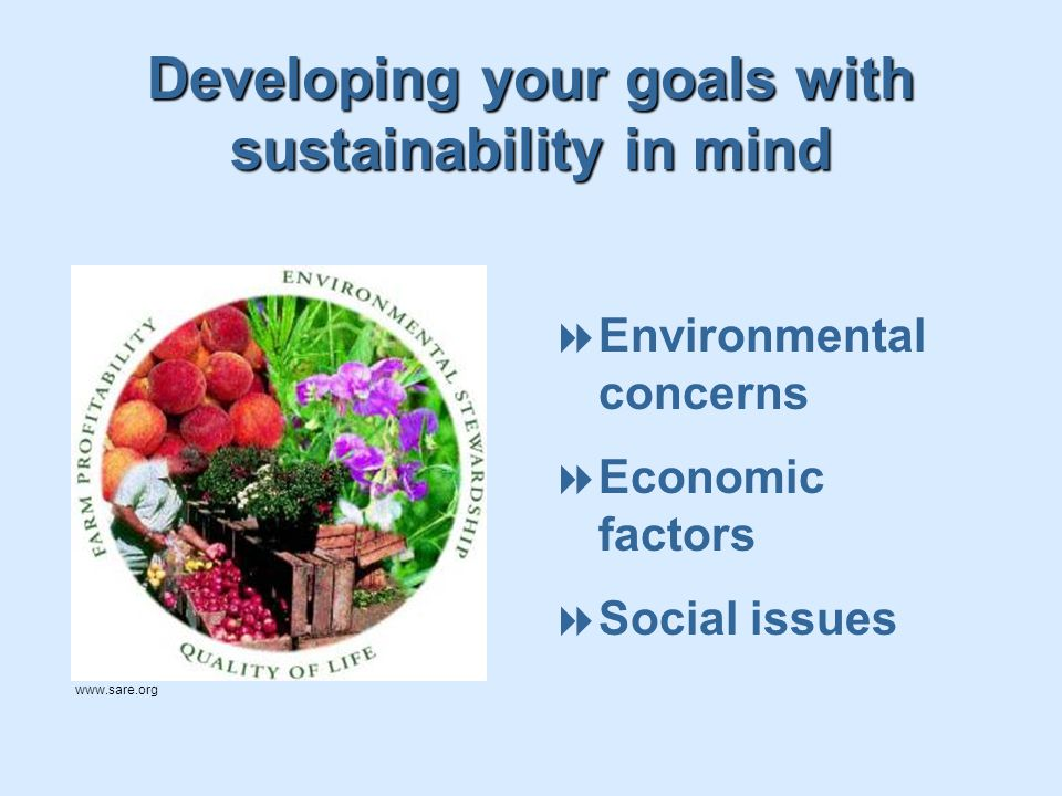 Developing your goals with sustainability in mind  Environmental concerns  Economic factors  Social issues www.sare.org