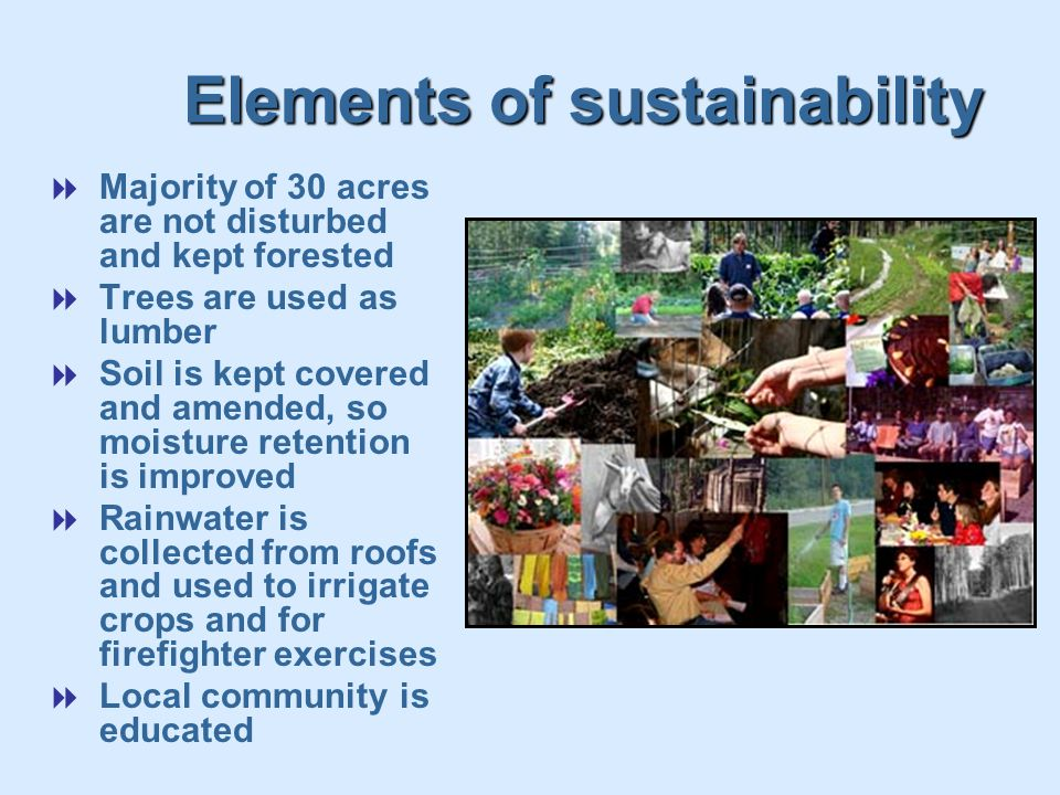 Elements of sustainability  Majority of 30 acres are not disturbed and kept forested  Trees are used as lumber  Soil is kept covered and amended, so moisture retention is improved  Rainwater is collected from roofs and used to irrigate crops and for firefighter exercises  Local community is educated