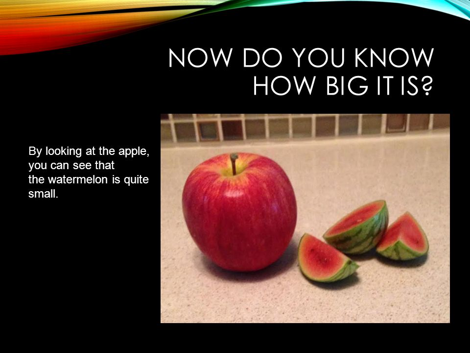 NOW DO YOU KNOW HOW BIG IT IS? By looking at the apple, you can see that the watermelon is quite small.